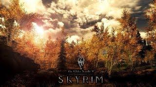 Выживание в TES 5: Skyrim. Первое прохождение с модами. Изучаем мир. #8