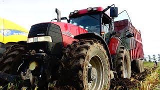 Kukurydza na Kiszonke w ciężkich warunkach! Na dwie sieczkarnie!|Claas|New holland|Case|