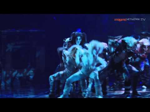 Cats - The Musical: Jellicle Songs for Jellicle Cats