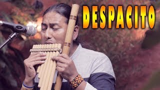 Luis Fonsi - Despacito ft. Daddy Yankee - Flute - Instrumental