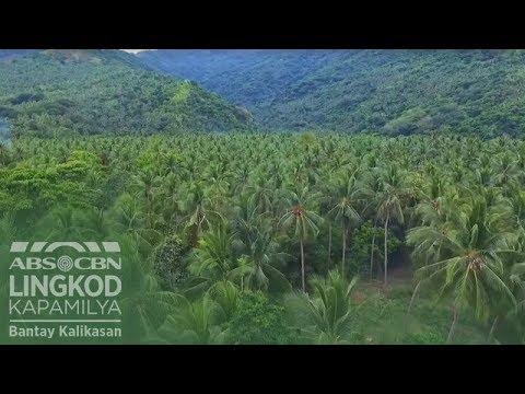 PANOORIN: Virgin Coconut Oil Plant na-turn over na ng Bantay Kalikasan sa Romblon