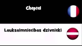 TRADUCTION EN 20 LANGUES = Cheptel