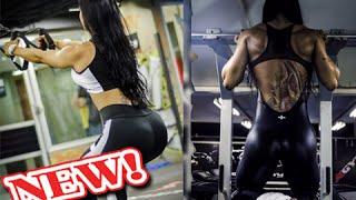 Video ALINE MACHADO (@alinemgf): IFBB Wellness Athlete: Workouts & Exercises @ Brazil [Fitness Gym] download MP3, 3GP, MP4, WEBM, AVI, FLV Juli 2018