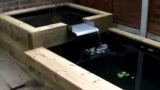 Raised Wooden Fish Pond