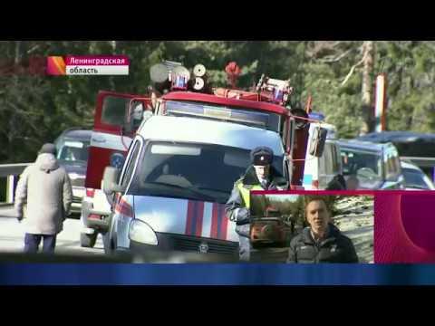 Смертельная авария в Ленобласти! На границе перевернулся автобус! Репортаж с места ДТП
