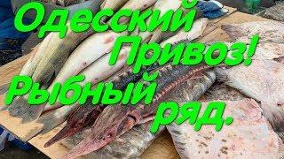Рынок Привоз Рыбный ряд Много рыбы и хорошие цены Тюлька Мидии Креветка Дунайка и осетры