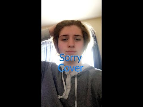 Justin Bieber - Sorry (PURPOSE : The Movement)(COVER BY 16 ...