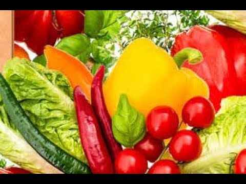 Dieta metabolica menu completo