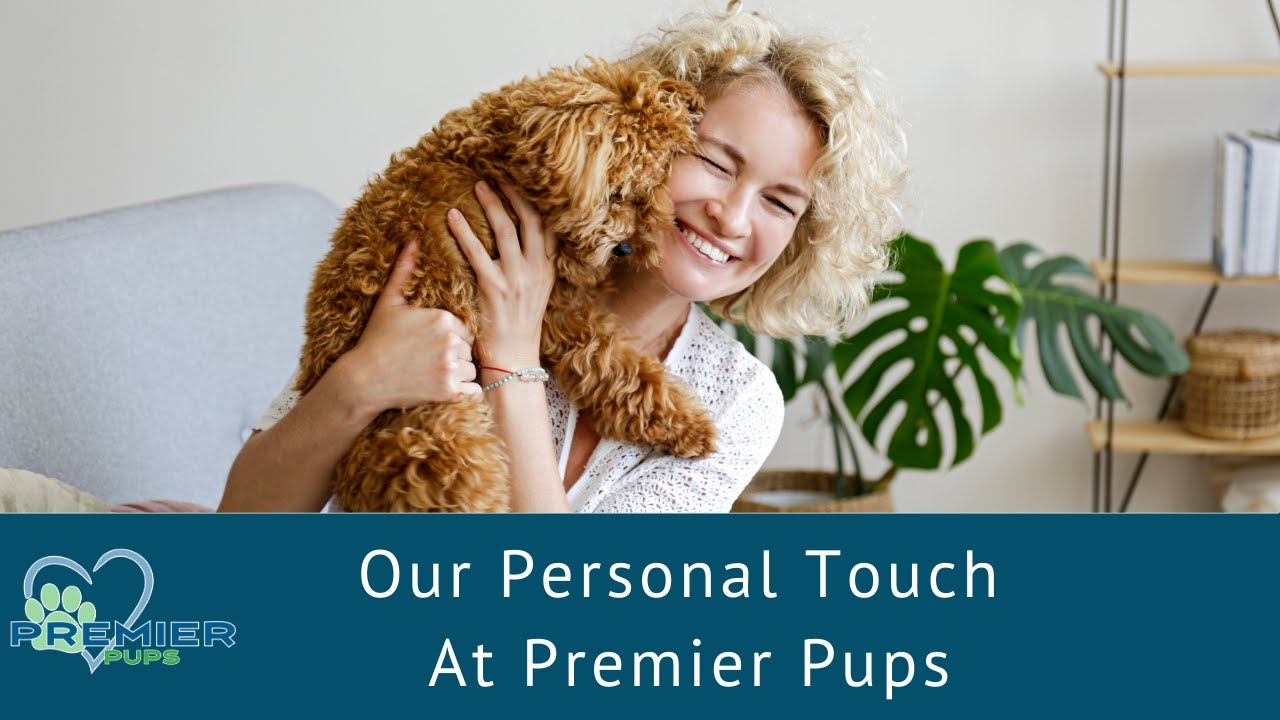 Premier Pups LLC | Better Business Bureau® Profile