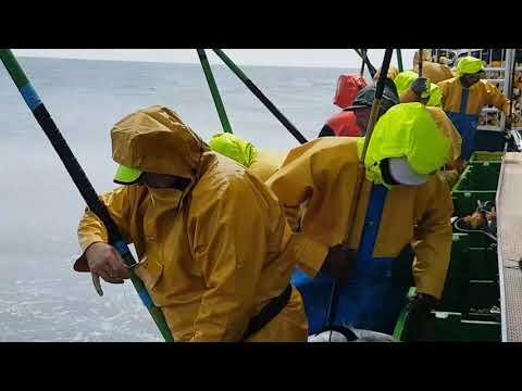 Manuel padre segundo Colindres pescando bonitos 2017