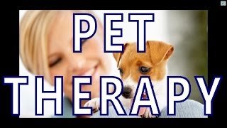 Pet Music Therapy Delta Waves, Relaxing Sweet And Soothing Cerebral Music With Guitar