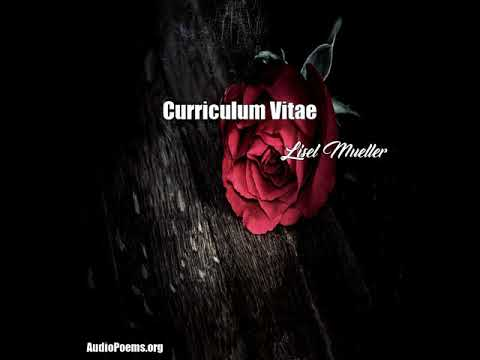 curriculum vitae by lisel mueller meaning