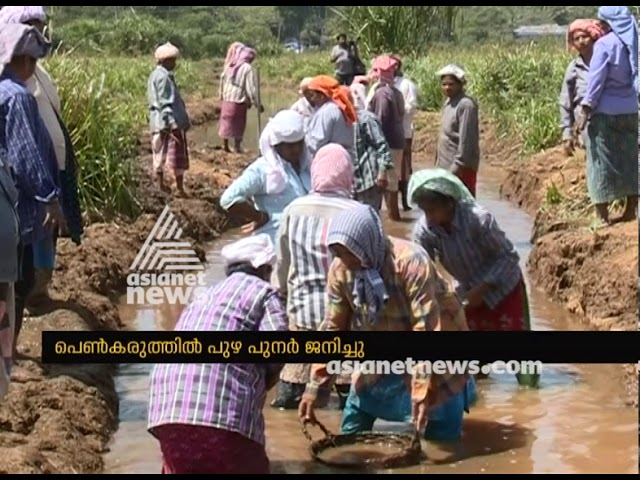 Women unites to give a new life to river at Idukki