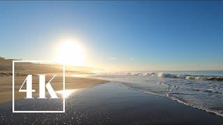 ASMR 🎧 Zuma Beach, Malibu California Sunrise Walk 🌅 3D Binaural Ocean Waves Sound 🌊