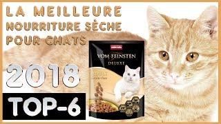 La Meilleure 🔥 Nourriture Sèche Pour Chats 😸 TOP-6 🔥