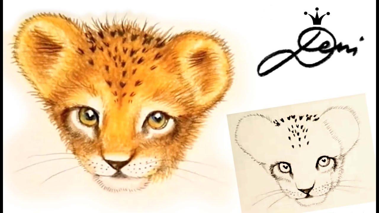 löwe malen 🦁 löwenbaby zeichnen 🦁 cute lion baby drawing 🦁