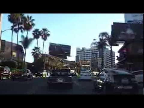 Long Drive to Venice Beach