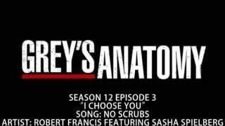 Baixar Grey's Anatomy S12E03 - No Scrubs by Robert Francis Featuring Sasha Spielberg