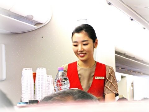 Asiana Airlines Flight Review: OZ751 Seoul (Incheon) To Singapore