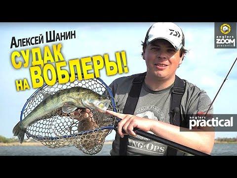 Как ловить судака на воблеры днем? Алексей Шанин