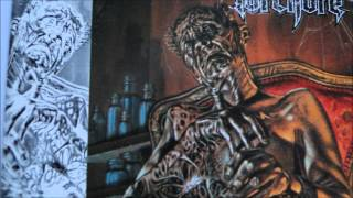 Torchure - Beyond The Veil