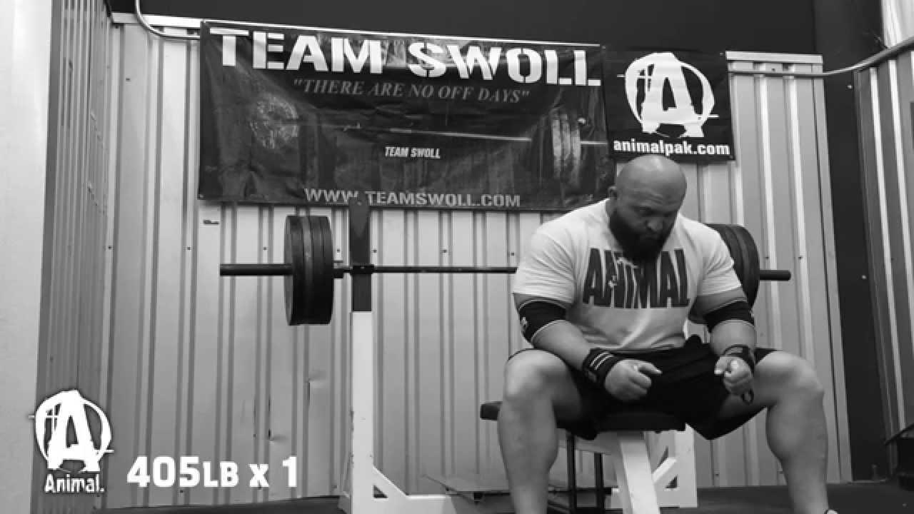 Download The Animal Underground: BJ Whitehead, Bench Strength Training
