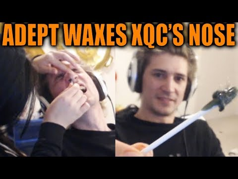 Adept Waxes XQc's Nose Hairs