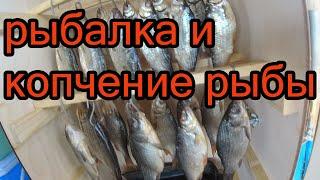 Рыбалка в июне 2021 и копчение рыбы с дымогенератором Hobbi Smoke первая попытка