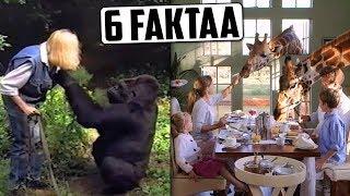 Kirahvihotelli Afrikassa? Gorilla puhuu viittomakieltä?   6 MIELENKIINTOISTA FAKTAA