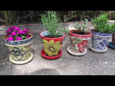 Flower Pots, - Hand Painted Spanish Garden Pots from Cactus Canyon Ceramics