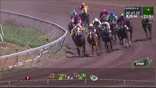 Vidéo de la course PMU PREMIO DARICO H