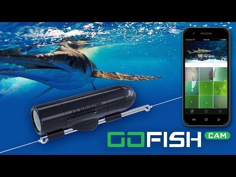 GoFish Cam HD Fishing Action Camera - Capture Footage In 1080p - 60fps