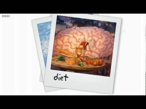 Look After Your Brain Brainsmart BBC