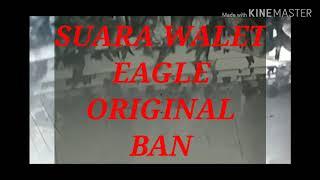 SUARA WALET. EAGLE ORIGINAL BAN. link di Deskripsi