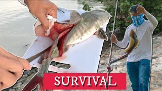 SURVIVAL Fishing @ Pasir Ris Beach ( Eating ONLY What I Catch!! )