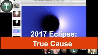Sun & Moon Group -Eclipse Evidence - Surface Scratch