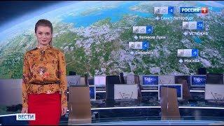"""Виктория Черникова - """"Вести. Погода"""" (20.03.18)"""