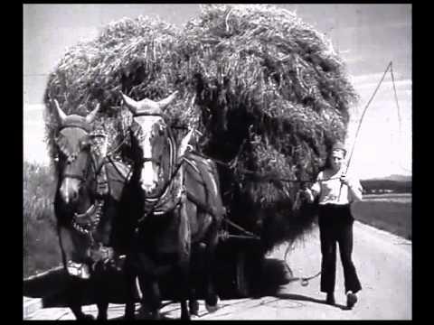 Das Gesetz der Strasse (1946)  (Teil 2)