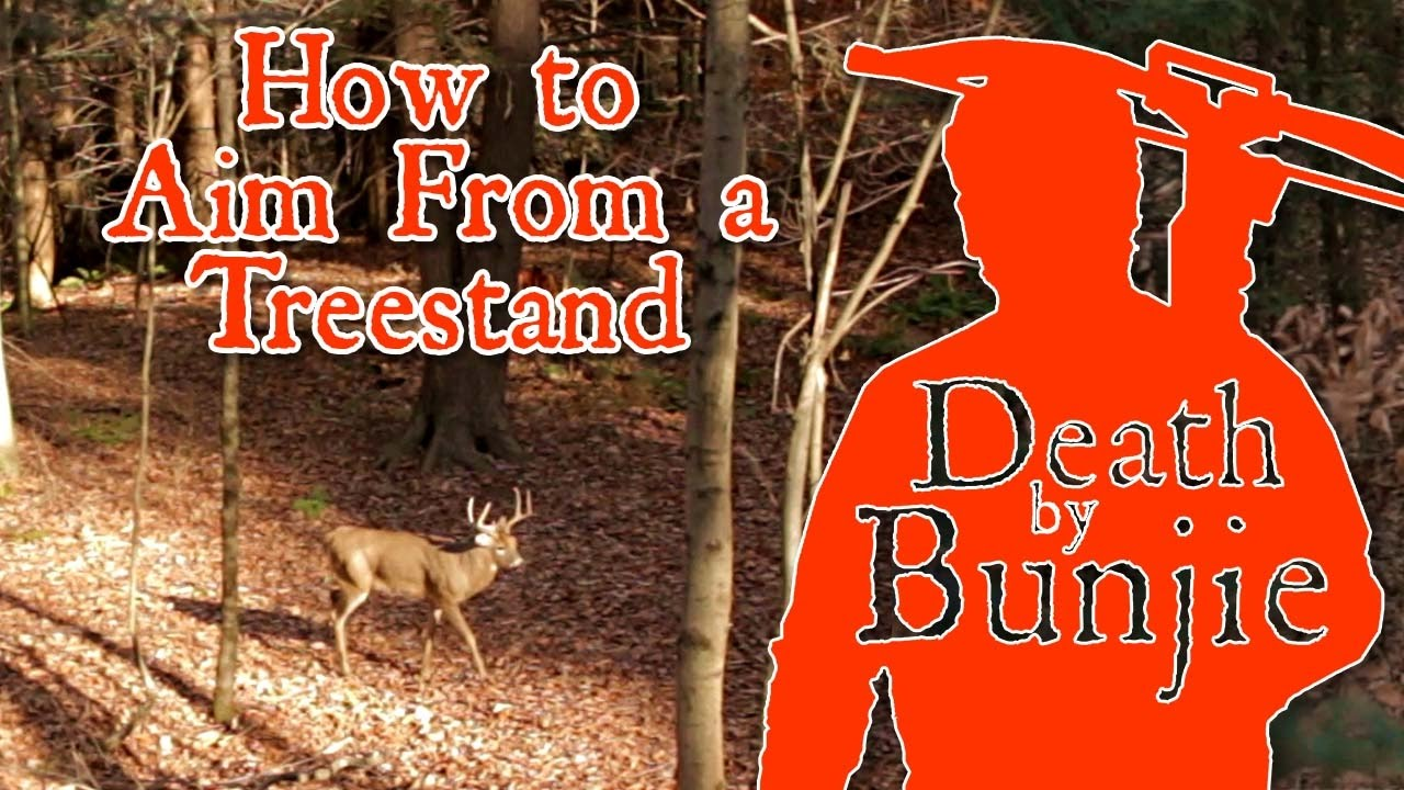 Should You Aim Low When Shooting From A Treestand With