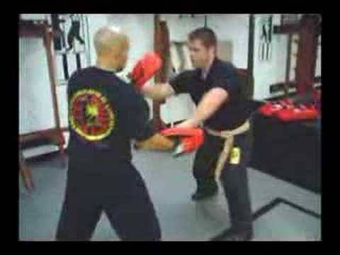 Wing Chun (TWC)  pad drill 2