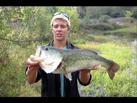 Pond Fishing BIG Bass