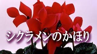 作詞:小椋 佳 作曲:小椋 佳 1975年(昭和50年)布施明さんのシングルと...