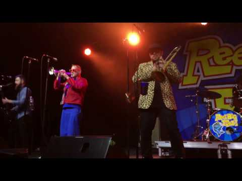 11 - Skatanic - Reel Big Fish (Live in Raleigh, NC - 01/22/17)