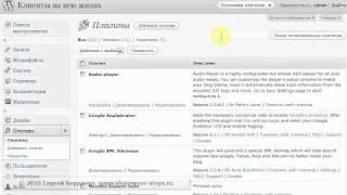 Как добавить javascript в Wordpress
