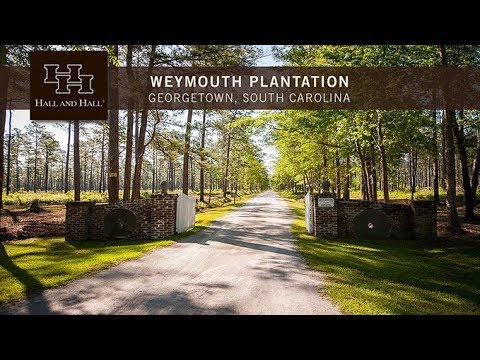Weymouth Plantation - Georgetown, South Carolina