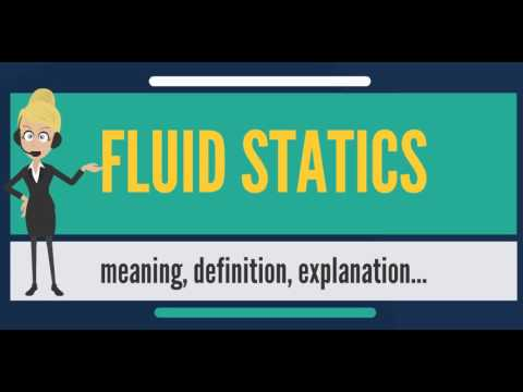 What is FLUID STATICS? What does FLUID STATICS mean? FLUID STATICS meaning, definition & explanation