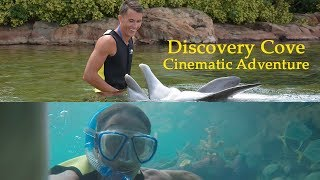 DISCOVERY COVE is INCREDIBLE: CINEMATIC UNDERWATER ADVENTURE