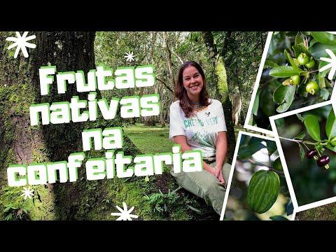 frutas-nativas-e-sua-importÂncia-na-confeitaria-🍍-doce-brasil