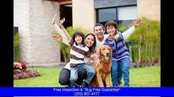 Pest Control Wilton Ct: Affordable Pest Control Save on Pest Control Service