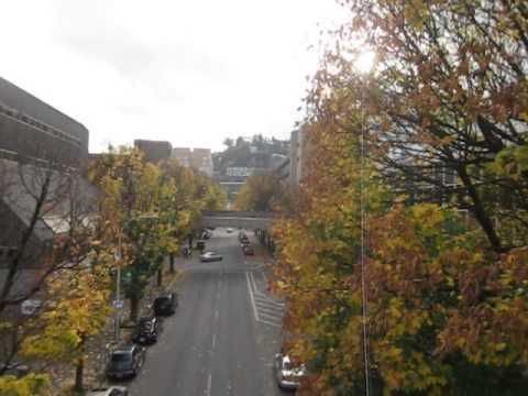 the real portland state university